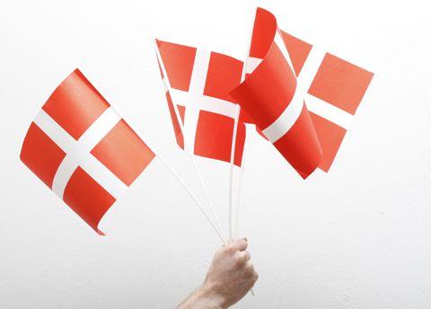 Finalen Danmark – Frankrig i Malmø