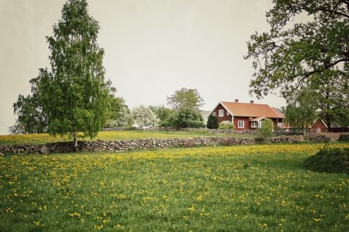 Lej Sommerhus i Sverige