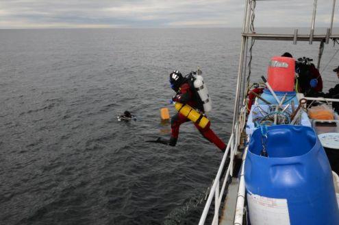 Dykning fra Ystad